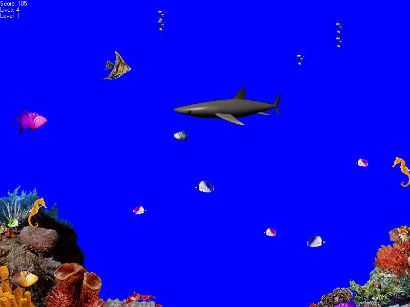 My fishy site just some small funny and bizarre fishing for Shark fishing games